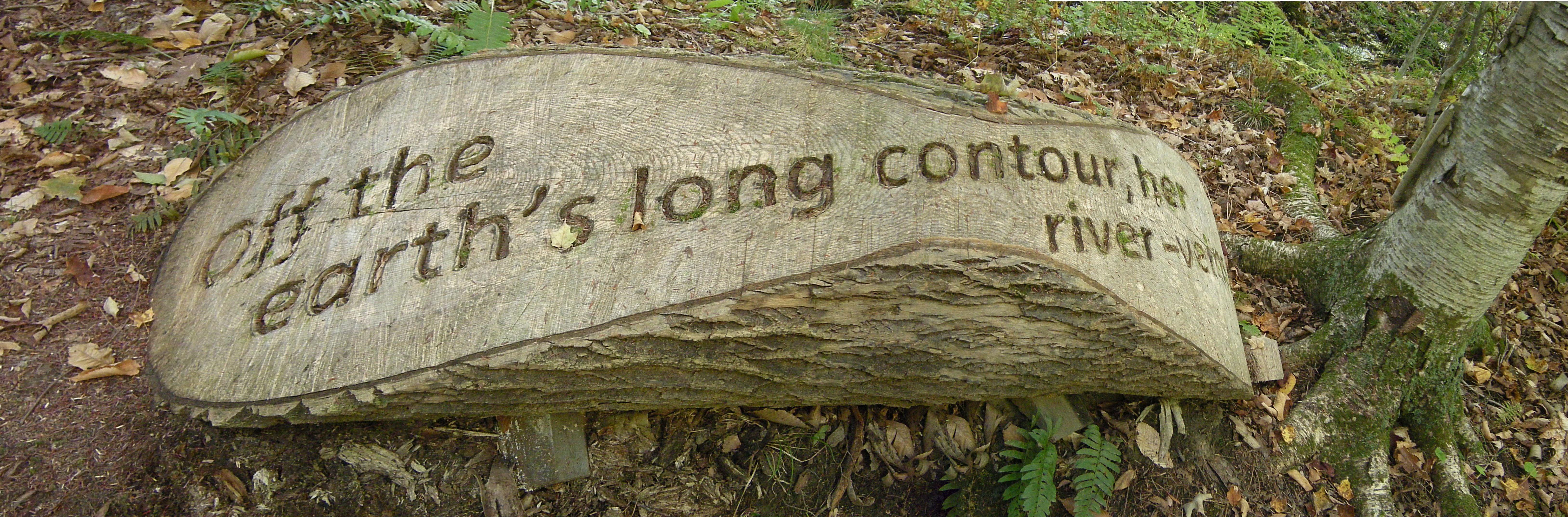 Poem inscribed on log